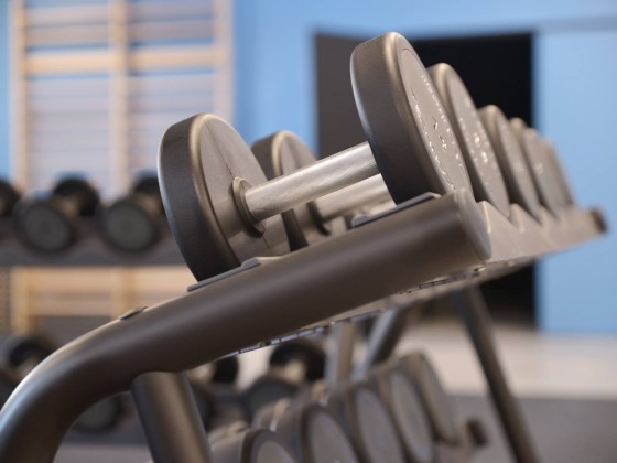 L'Espace Musculation